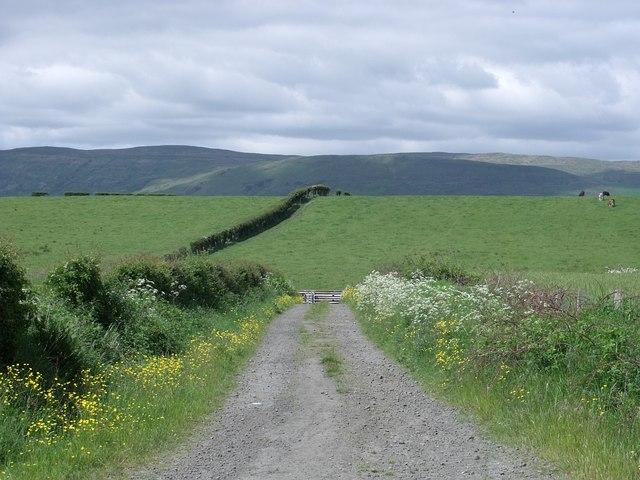 St. Flannans Road