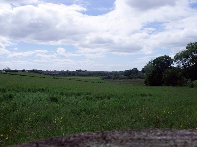 Fields south of Tintock
