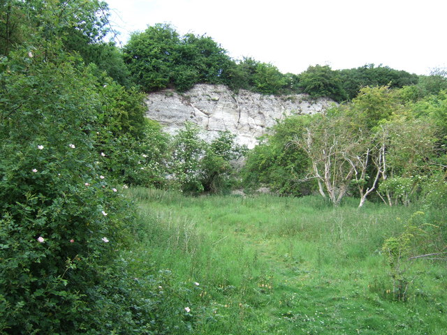 Chalk cliff in Ringstead Downs