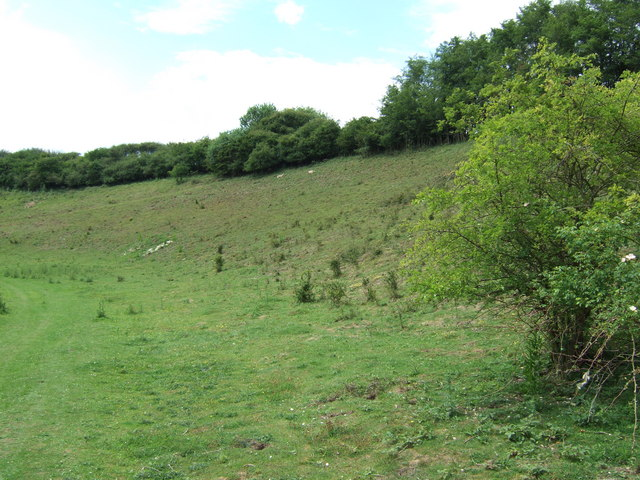 Ringstead Downs Nature Reserve