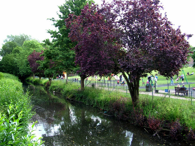 River Lark at the Abbey Gardens