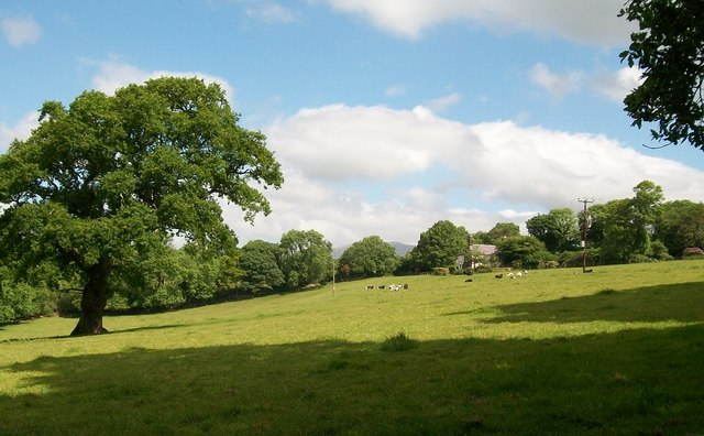 View north across pasture land to Bryn-du