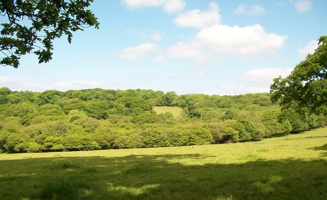 The wooded Dwyfor Valley above the village of Llanystumdwy