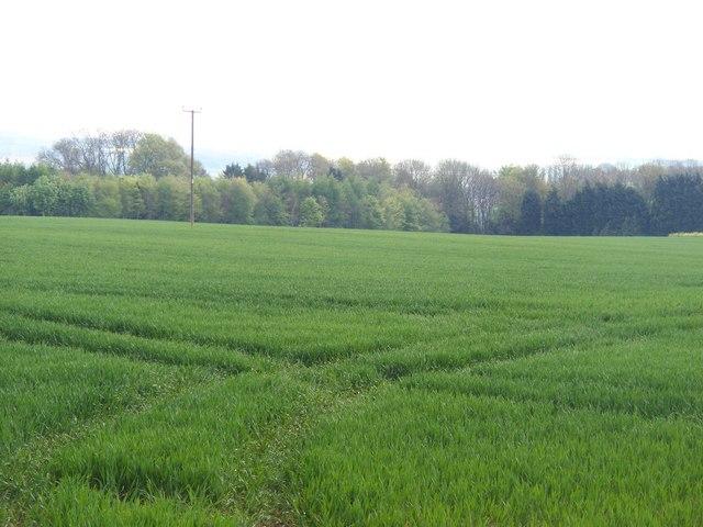 Gloucestershire farmland