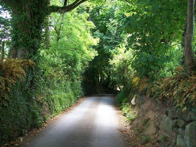 Steep descent on the Gwynfryn road above the village of Llanystumdwy