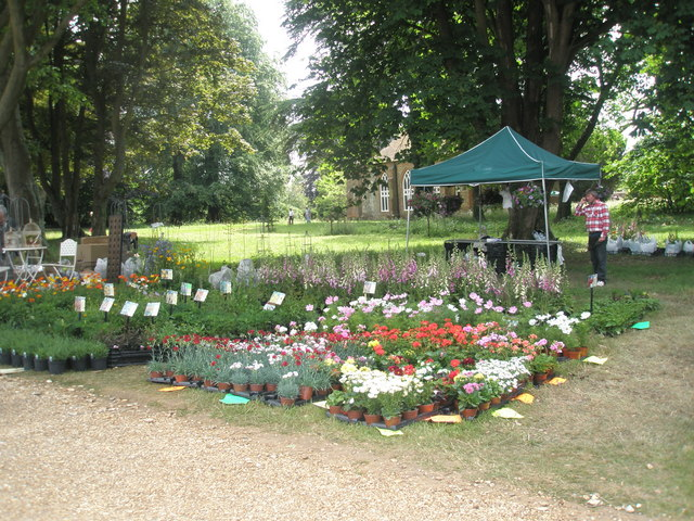 2010 Stansted House Garden Show (4)