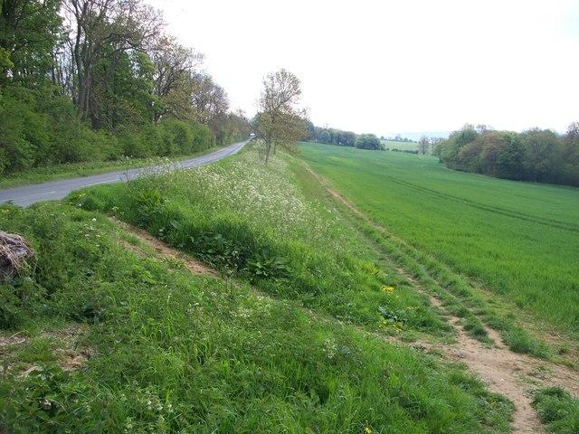 Alongside the road