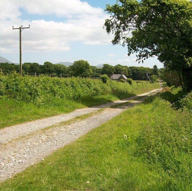The Gwynfryn Driveway