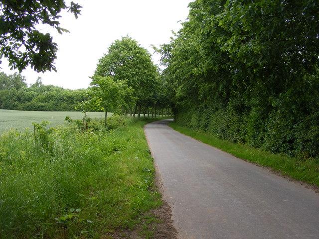 Bungay Road, Ellingham