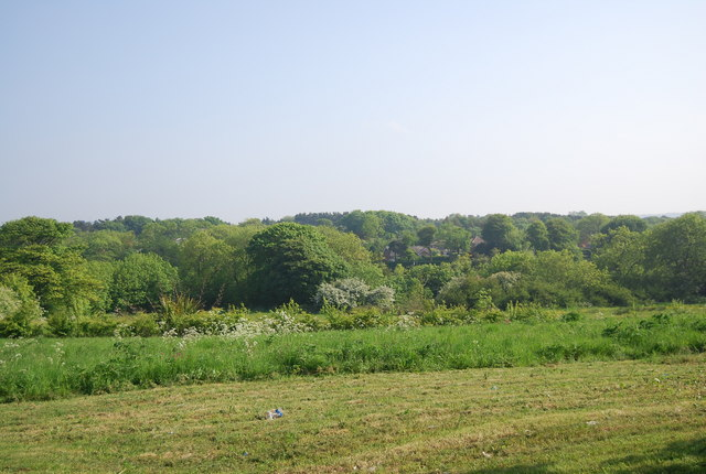 View west from Burniston Rd