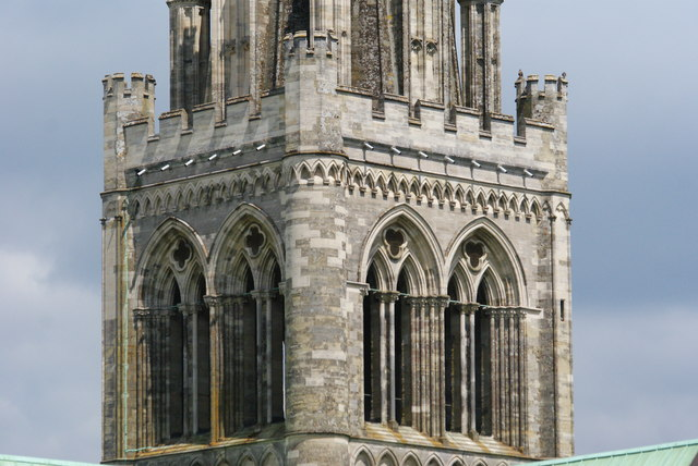 Peregrine Falcons at Chichester Cathedral (8)