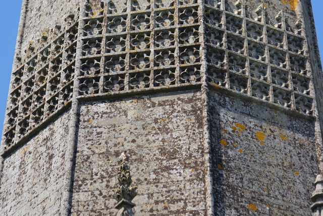 Peregrine Falcons at Chichester Cathedral (9)