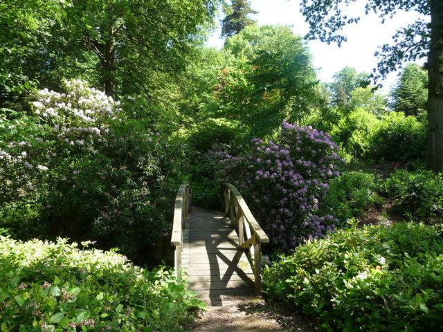 Japanese style wooden bridge in Powis Castle gardens