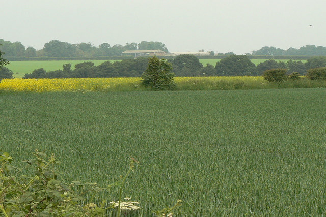 Landscape near Barrow Vale