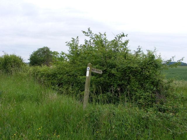 Footpath marker post near Bush Farm