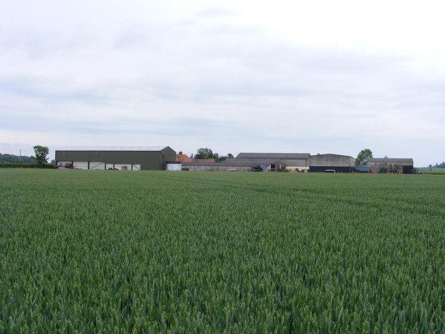 Bush Farm