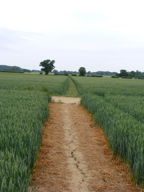 Footpath and farm track crossroads