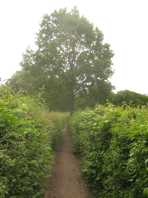 Footpath near Hunson Farm