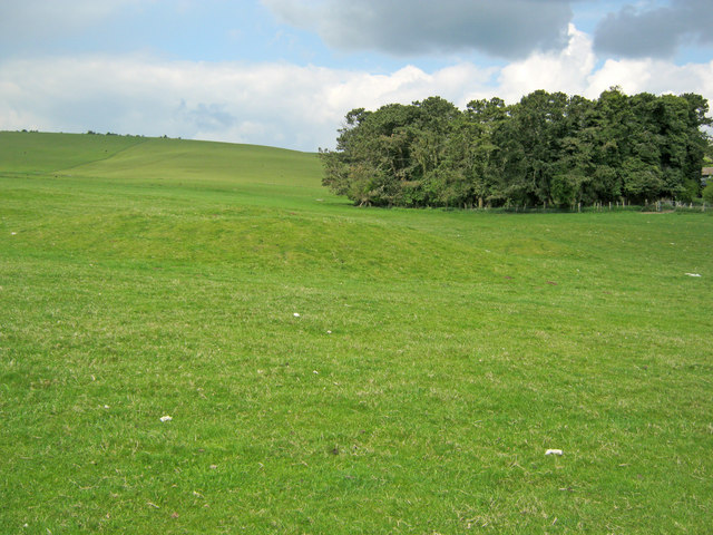Tumulus near New Town