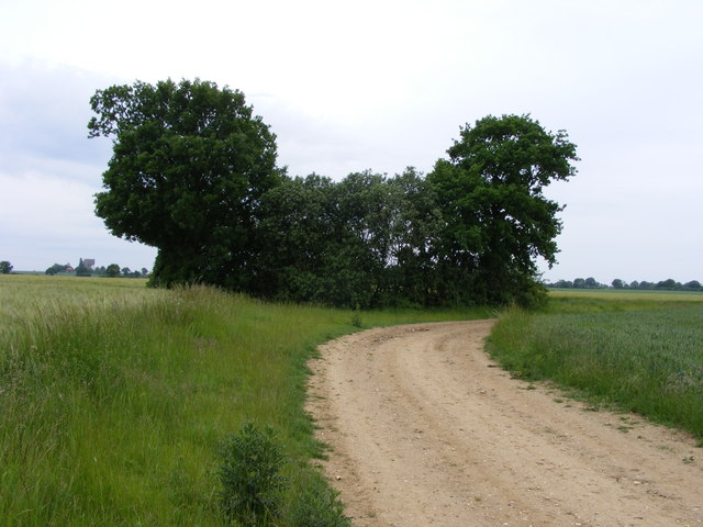 Footpath to Loddon Ingloss