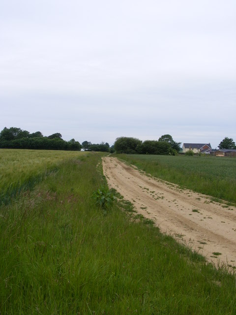 Footpath to Loddon Ingloss