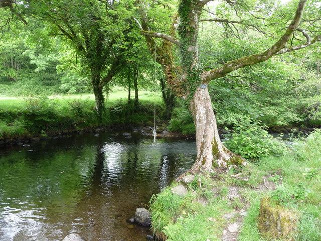 Rope swing on the Afon Dwyfor