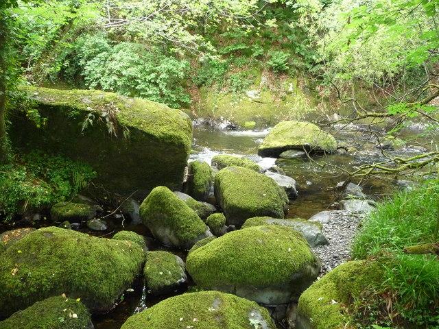 Mossy boulders on the Afon Dwyfor