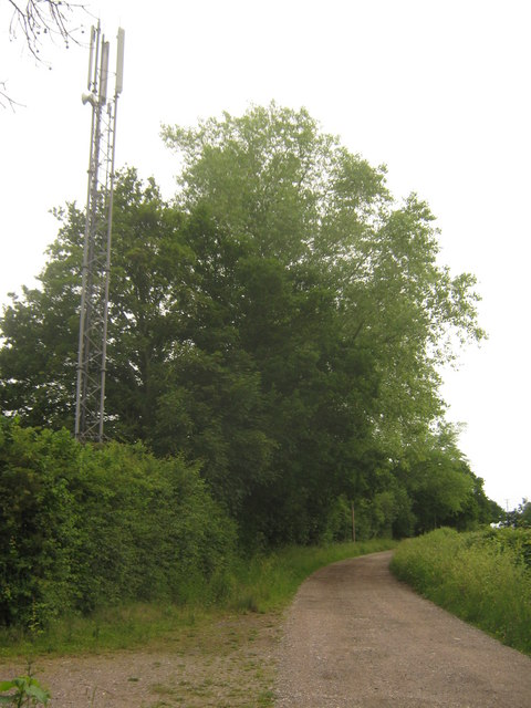 Mobile Phone mast near Haynes Farm