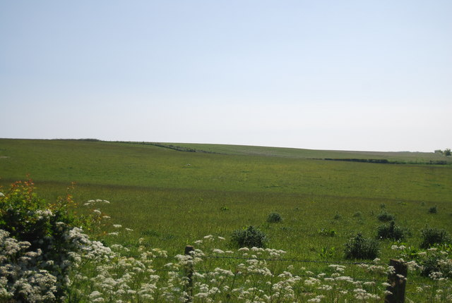 Pastureland, Cliff Lane