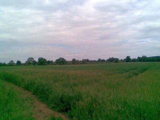 Farmland near Kislingbury