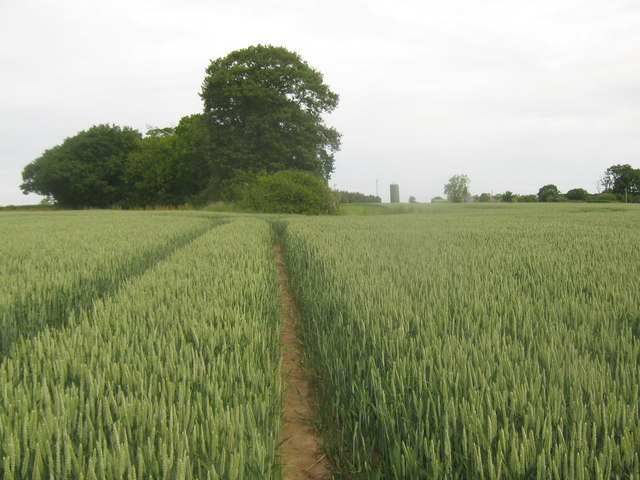 Footpath towards Barrack Farm access road