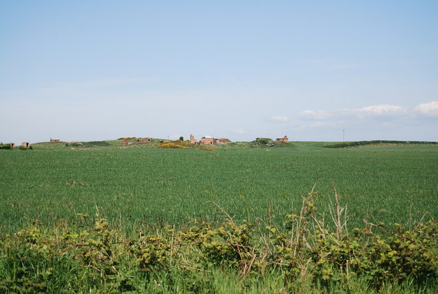Remains of RAF Bempton amongst the wheat