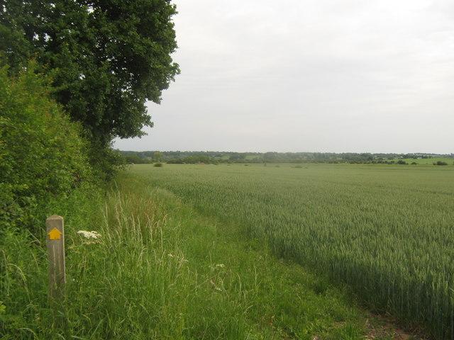 Footpath towards Frenchay Wood