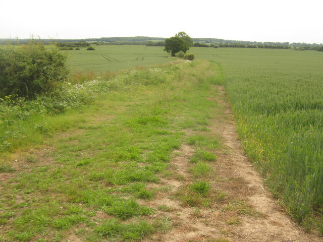 Farm track towards field near Tenterden Sewer
