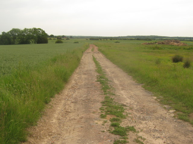 Farm track leading towards the Tenterden Sewer