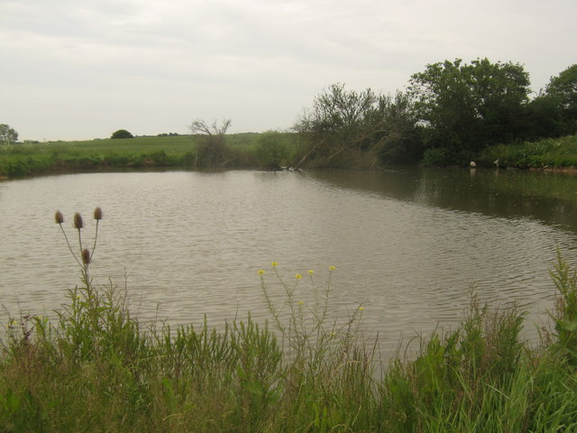 Pond near Tenterden Sewer