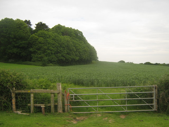 Stile and Gate near Frenchay Wood