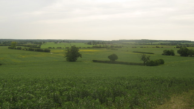 View from Frenchay Wood