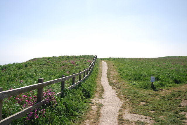 Headland Way, Bempton Cliffs