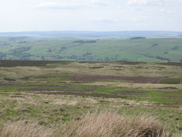 Panorama from the currick on Curricks Rigg (2: NNWb - Blackcleugh Rigg)