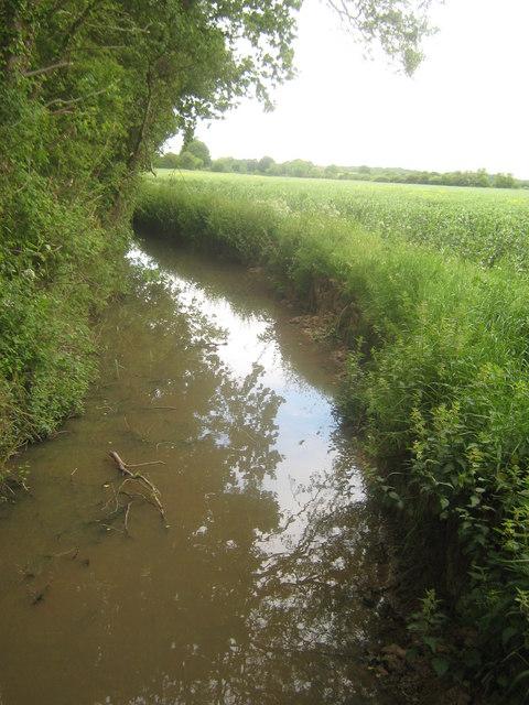 Dyke near Spring Wood
