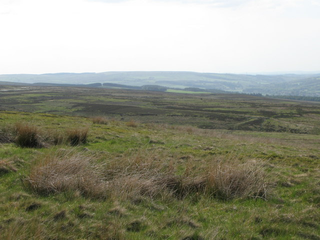 Panorama from the currick on Curricks Rigg (4: WNW - Blackcleugh Rigg)