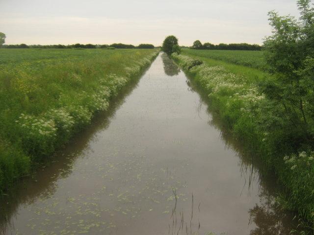 Tenterden Sewer - flowing towards Reading Street