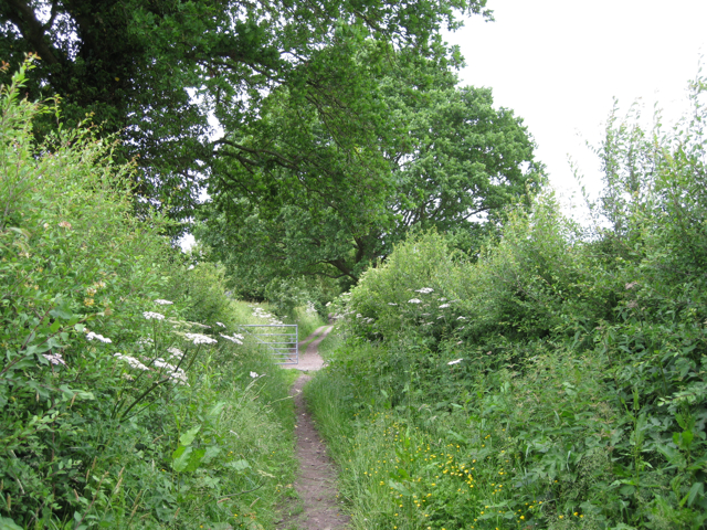 Bridleway south of Brome Hall Farm: 1