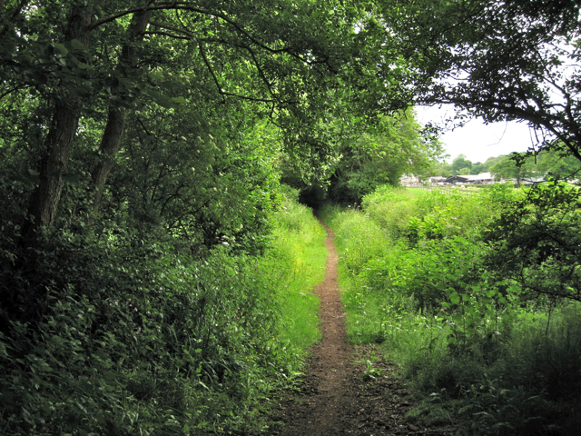 Bridleway south of Brome Hall Farm: 2