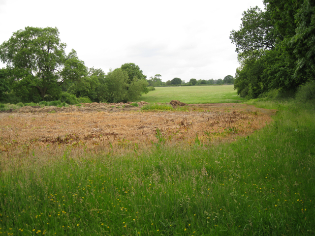 Herbicide-treated ground south of Brome Hall Farm
