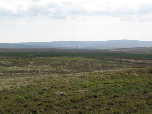 Panorama from the currick on Curricks Rigg (6: WSW - Hesley Shaw)