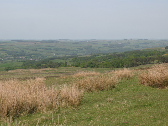 Panorama from the currick on Curricks Rigg (15: NE - Allensgreen)