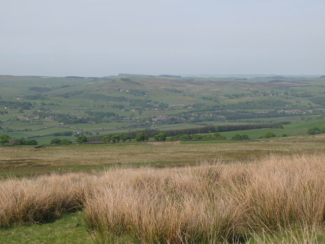 Panorama from the currick on Curricks Rigg (16: NNE - Tow House and Redburn)