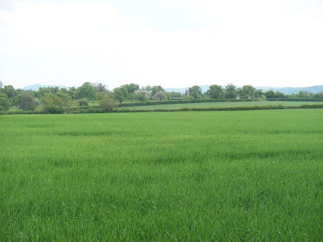 Worcestershire farmland